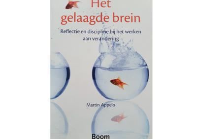 Het Gelaagde Brein